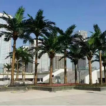 酒店仿真椰子树