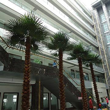 酒店餐厅仿真棕榈树