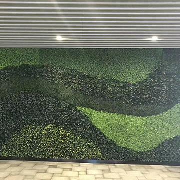 商场垂直绿化墙