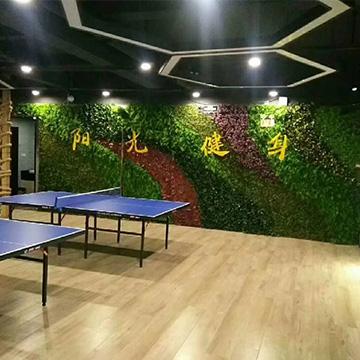健身房植物墙