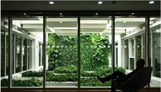 仿真植物装饰