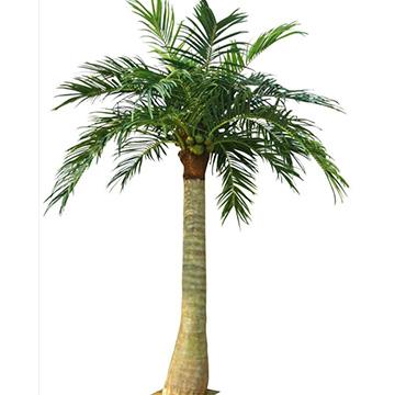 仿真椰子树仿真大树