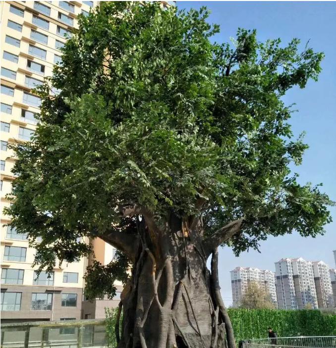 水泥仿真树的分类