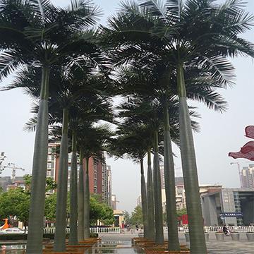 广场群植仿真椰子树