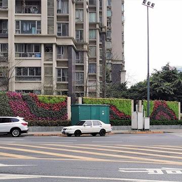 小区垂直绿化植物墙