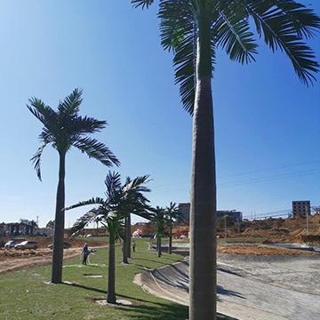 公园仿真椰子树