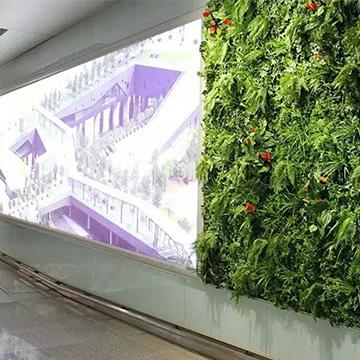 火车站仿真植物墙