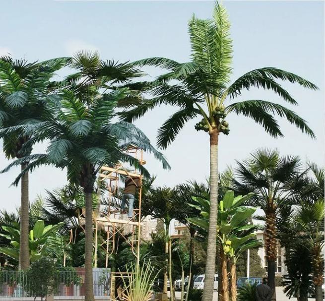 仿真椰子树应用场景
