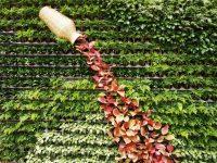 仿真植物墙在墙体装饰的应用