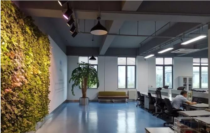 室内仿真植物墙材料选择