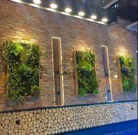 仿真植物墙优势