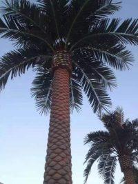 仿真大树的制作工艺和特点