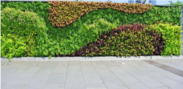 垂直绿化的应用场景盘点