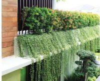 垂直绿化的几种形式