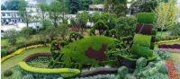 植物绿雕和仿真绿雕的应用