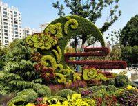 绿雕景观一般用什么植物