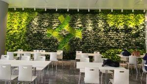 植物墙固定在墙上的几种方式