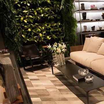 室内客厅植物墙