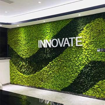 室内办公室仿真植物墙