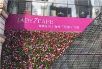 仿真植物墙花卉设计