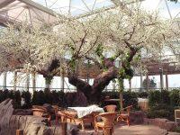 生态餐厅仿真树