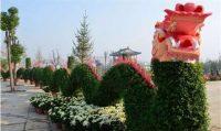 仿真植物绿雕的优势有哪些