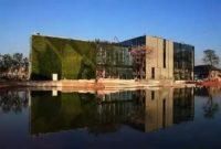 学校垂直绿化植物墙