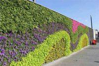 植物墙的作用