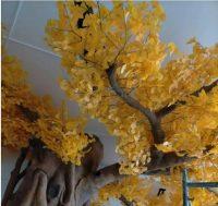 仿真银杏树分类