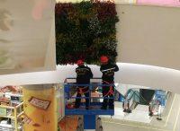商城仿真植物墙安装