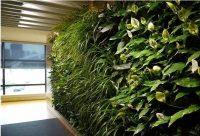 仿真植物墙环保问题