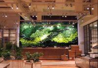 仿真植物墙造景模式